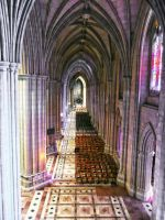 National Cathedral Washington DC by PaulWeber
