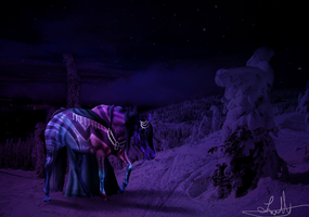 In the middle of the night .:COMM:. by EquineLullaby