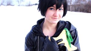 Xion- Aster tataricus by FlaminGay