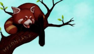 red pandas are so metal by themockingmirror