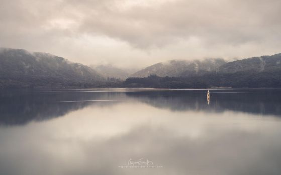Out of the Silent Mirror by Miguel-Santos