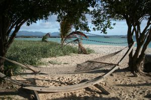 Nets in the Sand by tammyins