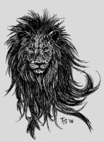Lion by TS-cat