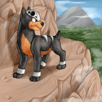 Houndour by Night-Wolf122