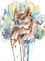 Owl by PointElement