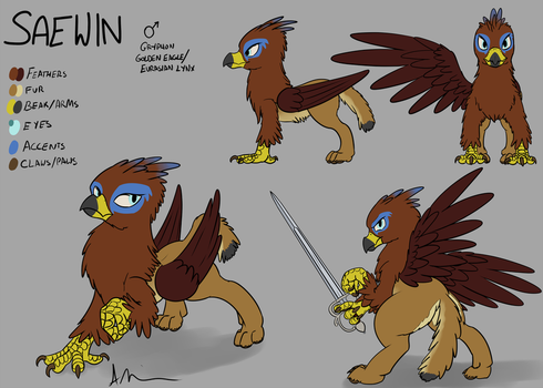 Saewin Reference by TheAndyMac