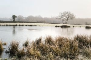 Donisthorpe frozen pond by RKdesigns