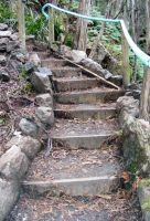 Stairs Through Woods 08 by Gracies-Stock