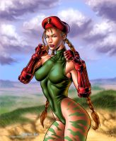 Cammy 2 by DrewGardner