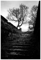 Stairway to... by kroysly