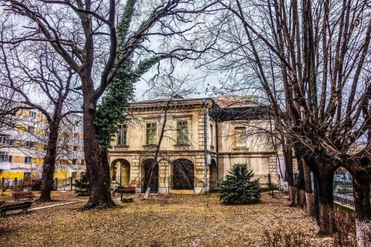 Natural History Museum in Iasi by EnacheArmand
