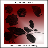 Rose Brushes by hoopless-stock