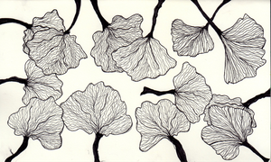 Ginko Zentangle by E7Flux