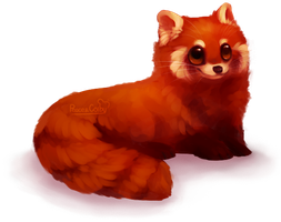 Red Panda by Peace-Colby