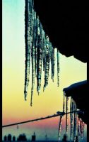 icicles by bluesgspot