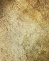 butterfly-stock_texture 012 by butterfly-stock