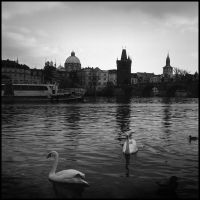 Prague notes. IX by alexeysilaev