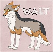 Walt the Coyote by IsabellaPrice