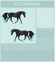 Zachariah Reference Sheet by Printed-Shadows