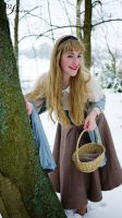 Briar Rose in the Snow (3) by hollysocks