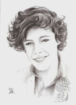 Gift: Harry Styles by Drerika