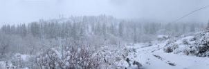 The snows of Bizz Johnson Trail by SurfTiki
