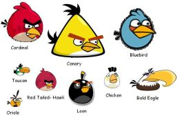 Angry Birds In Real Life by SpiderMatt512