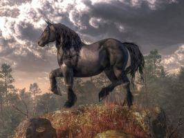 Dark Horse by deskridge