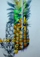 Pineapple by seraphxviii