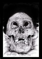 A skull by GTT-ART