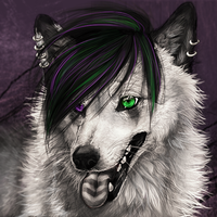 .:The Lucky One:. by WhiteSpiritWolf