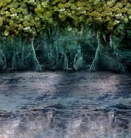 Fantasy Forest STOCK 1 by livyer