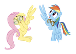 Fluttershy and Rainbow Dash High Wing by GeoNine
