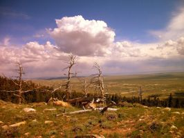 Wyoming Beauty by c0mMas-Rvl3