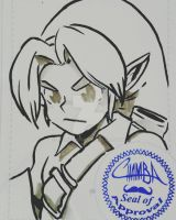 BAM8 - Young Link by theCHAMBA