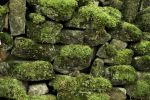 Stone Wall (Stock 24mp) Free by jeffkingston