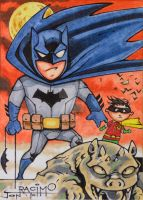 Batman and Robin PSC by joraz007