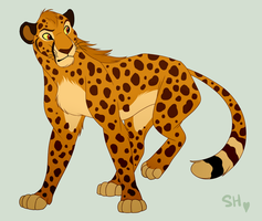 Wind The Cheetah by EmilyJayOwens