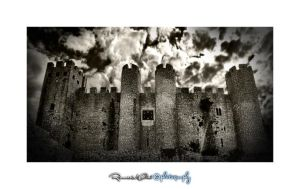 Obidos Castle by rifas