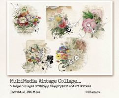 MultiMedia Vintage Collage by Diamara