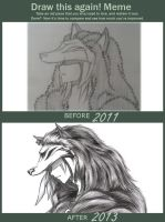 [MEME] Before and After: 2011 vs. 2013 by Wind1006