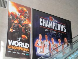 Rattlers And Mercury Champions Banners by BigMac1212