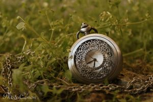 TimeDream by PhotoCanon