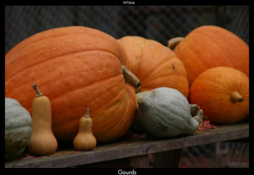Gourds by WYArts