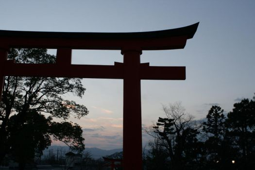 Torii Gate in Kyoto by AshleyLegit