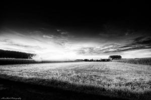 The Country Life by AlexShot