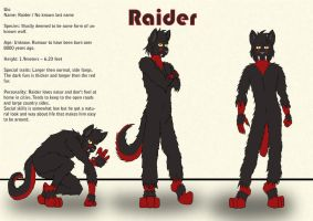 Raider by Dragon-Furry
