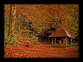 Autumn in Bavaria 2005 by Hartmut-Lerch