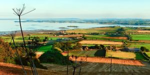 View from Scrabo Hill II Close by Gerard1972