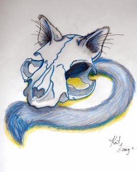 Contrast Cat Skull. by sexykitty2385